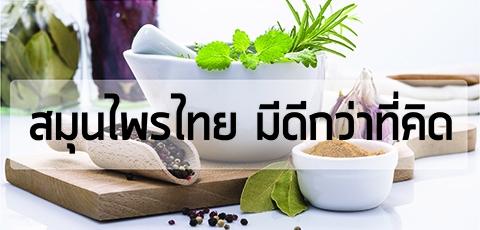 สมุนไพรไทยมีดีกว่าที่คิด